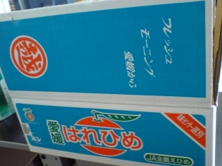 20080110121637.JPG