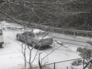 2008 snow-2.jpg