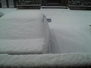 2008 snow-3.jpg