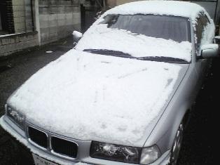 2008 snow.jpg