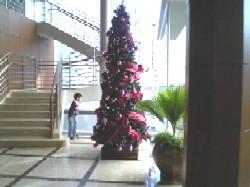 Xmastree.JPG